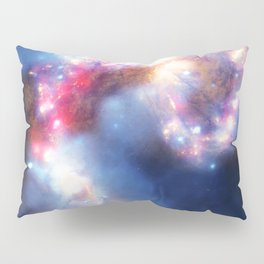 Looking to the skies Pillow Sham