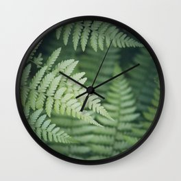 Where the Redwood Fern Grows Wall Clock