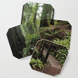 Redwood Roaming - California Wanderlust Coaster