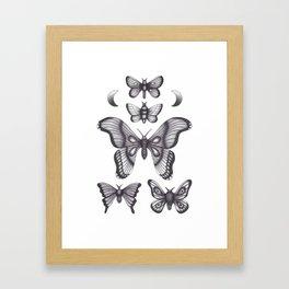 Mothes Framed Art Print