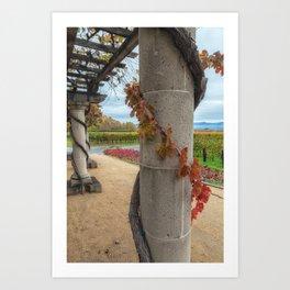 Column with Grapevine Art Print