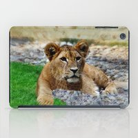 the lion king iPad Cases featuring King Lion by helsch photography