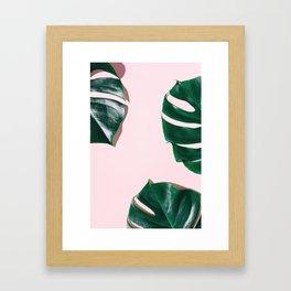 Green monstera leaves on pink ink Framed Art Print