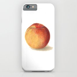35. Watercolour Baylor Seedling No. 1 Peaches Painting (Prunus Persica) iPhone Case