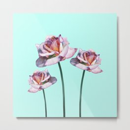 Roses and little frogs Metal Print