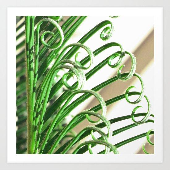 Cycad Art Print