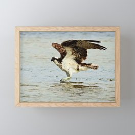 Dancing on the Sandbar Framed Mini Art Print