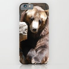Posing for the Camera iPhone 6 Slim Case