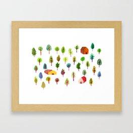 Spring Woods Framed Art Print