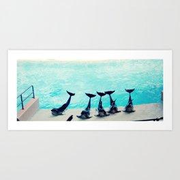 Spectacular Dolphin Show Art Print