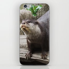 Stretching out for a curious cause iPhone Skin
