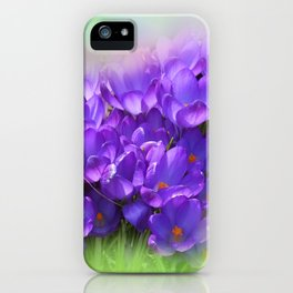 the beauty of a summerday -100- iPhone Case
