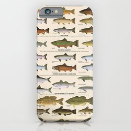 Illustrated Western Game Fish Identification Chart iPhone Case