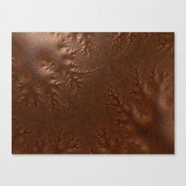Burnished  Copper Canvas Print