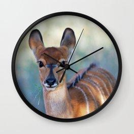 Nyala deer photo Wall Clock