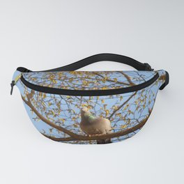 pigeon blue Fanny Pack