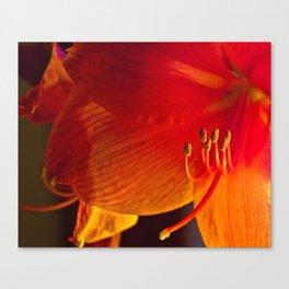 glowing Canvas Print