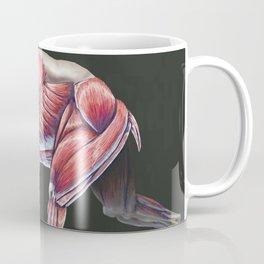 Arctodus Simus Muscle Study (No Labels) Coffee Mug