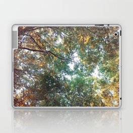 Forest 011 Laptop & iPad Skin