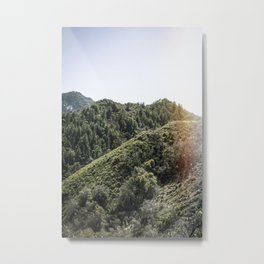 Up on the Mountain Top Metal Print