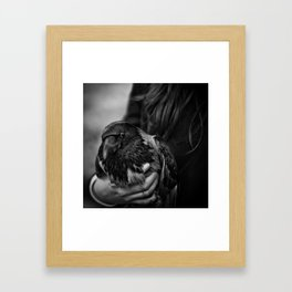 BIRDS Framed Art Print