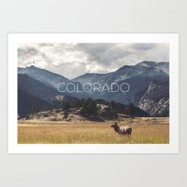 Colorado wild Art Print