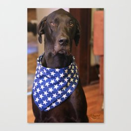 Patriotic Great Dane Canvas Print