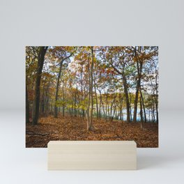 Autumn Woods Mini Art Print