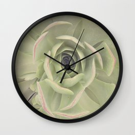 Iceplant  Wall Clock