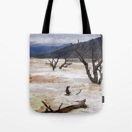 Life & Death Tote Bag