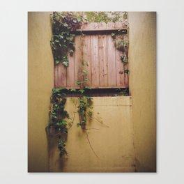 Ivy Fence Canvas Print
