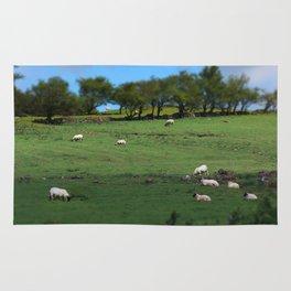 Field of Irish Sheep Rug