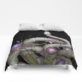 Morning Glories Comforters