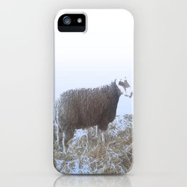 Solitude on straw iPhone Case