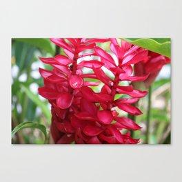 Hot Hot Pink Flora Canvas Print