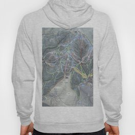 Killington Resort Trail Map Hoody