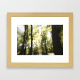 Embrace The Blur Framed Art Print