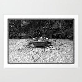 Flower Pool Art Print