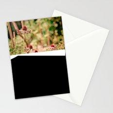 Pink + Orange Stationery Cards
