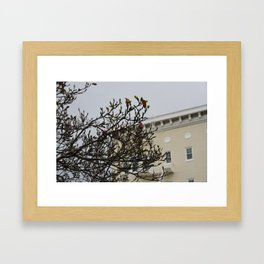 Photograph of a pink and white blossom tree in front of a light yellow San Francisco house Framed Art Print