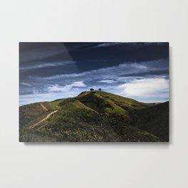 Two Tree Hill Metal Print