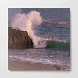 In Godwit Land Metal Print
