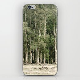 PHOTOGRAPHY / TREES 01 iPhone Skin
