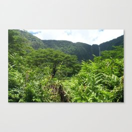 HAWAII BIG ISLAND HORSE Canvas Print