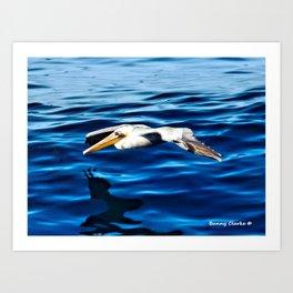 Gliding Grace Art Print