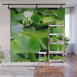 Waterlily #2 Wall Mural