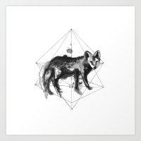 The fox's path Art Print