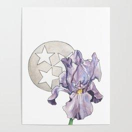 Tennessee Iris Poster