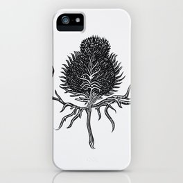 Onopurdum Acanthium iPhone Case