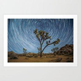Joshua Tree Star Trail Art Print